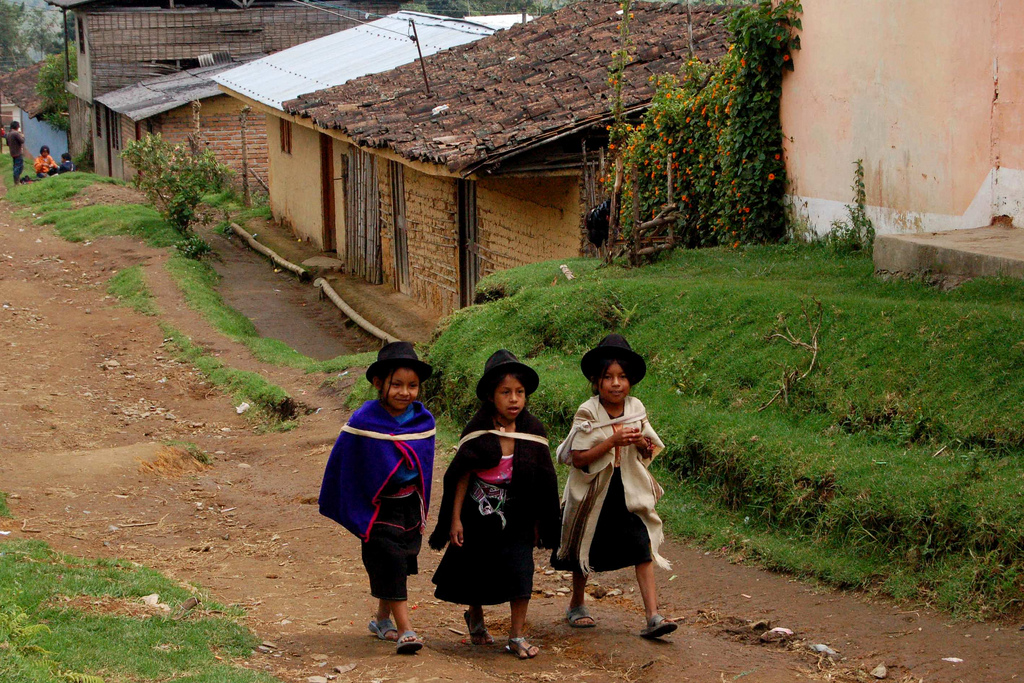 No Peace Without Inclusion: Indigenous and Afro-Descendant Circumscriptions in Colombia